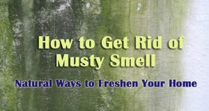 How to Get Rid of Musty Smell