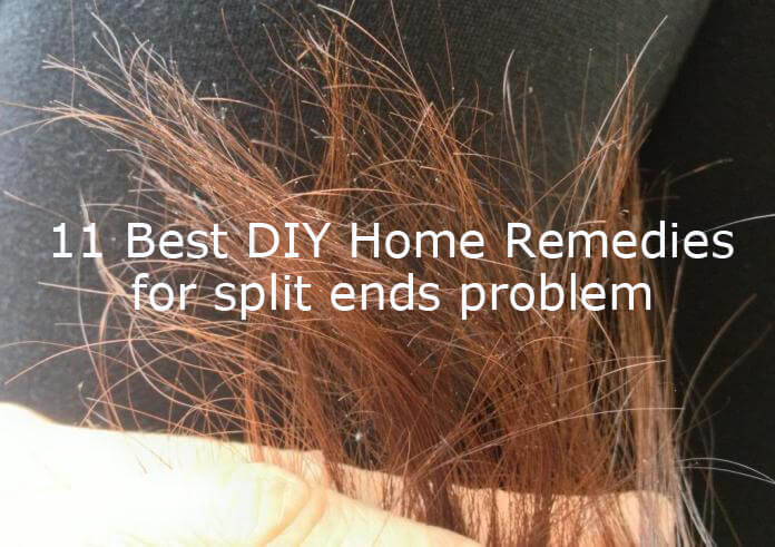 11 Best Diy Home Remedies To Get Rid Of Split Ends Problem