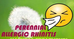Perennial-Allergic-Rhinitis-Natural-Treatments