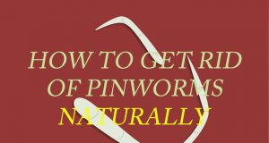 Home Remedies to Get Rid of Pinworms Naturally and Fast